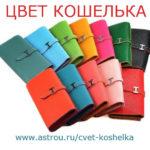 koshelki-cveta